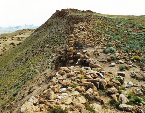 Fig. 8. A section of the defensive wall that lined the rim of the mesa at Castle Face