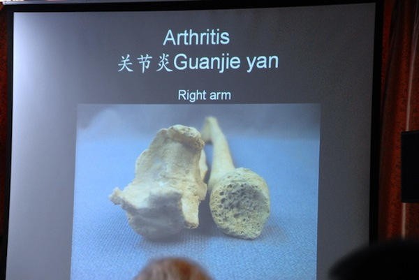 Fig. 7. From the presentation of Christine Lee. Photo courtesy of Chen Jian