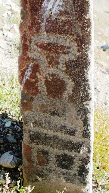 Fig. 10. The top of this pillar was broken off and it now stands only 60 cm in height. An archaic style chorten (25 cm high) was deeply cut into its surface using an old engraving technique. This style of chorten with its vertically segmented base, small round bumpa, very prominent harmika (T-shaped structure at top), and absence of a spire can almost certainly be attributed to the early historic period.