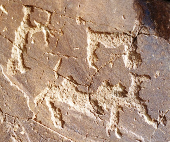 Fig. 1. A bowman taking aim at a Bactrian camel and a wild ungulate.