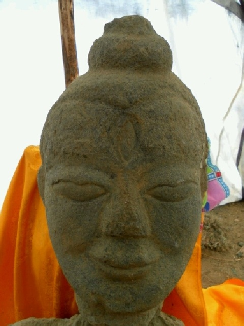 Fig. 5. A close-up of the head of the Khardong sculpture. Photo courtesy of Karma Gyaltsen.