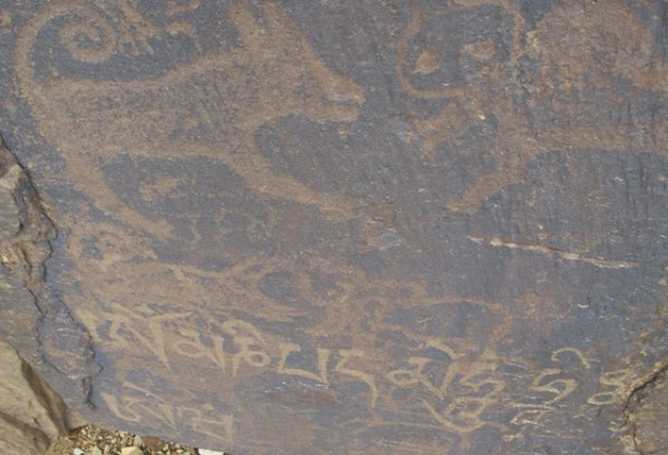 Fig. A. Two carnivores with anatomical features reminiscent of tigers attacking wild yaks, Late Bronze Age or Iron Age. Above these petroglyphs, a more clearly rendered striped carnivore also attacks a wild yak (see August 2012 newsletter for image). The mani mantra scrawled across the lower portion of the rock was engraved at a much later time (early historical period or possibly somewhat later). This mantra may have been carved to express compassion for the slaughter of animals.