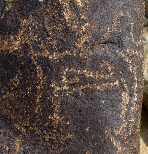 Fig. 63. What appears to be an equid embellished with a scroll. This is the only such animal style figure detected at this extensive rock art site in Ruthok.