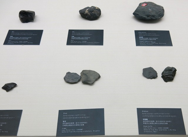 Fig. 3. Stone cores, scrapper and choppers from Shartay Tsho and Kyirong (Skyid-grong), Upper Paleolithic (30,000–10,000 BP). Tibet Museum collection.