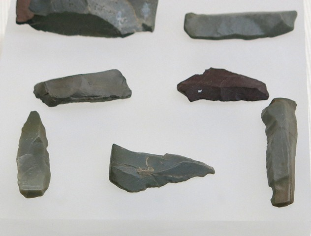 Fig. 15. Microlithic blades and cores, Drongpa ('Brong-pa), Upper Tibet. Dated to 7000–5000 BP. Tibet Museum collection.