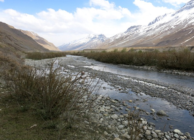 Fig. 2. A braid of the Spiti river upstream of Kaza