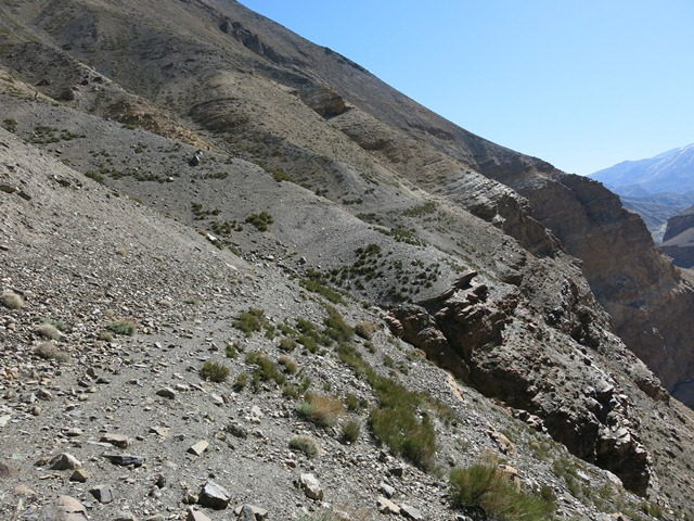 Fig. 9. The old bridle trail between Hurling and Gyu; situated as much as 300 m above the main road in the Spiti valley, this route is hardly used any more.