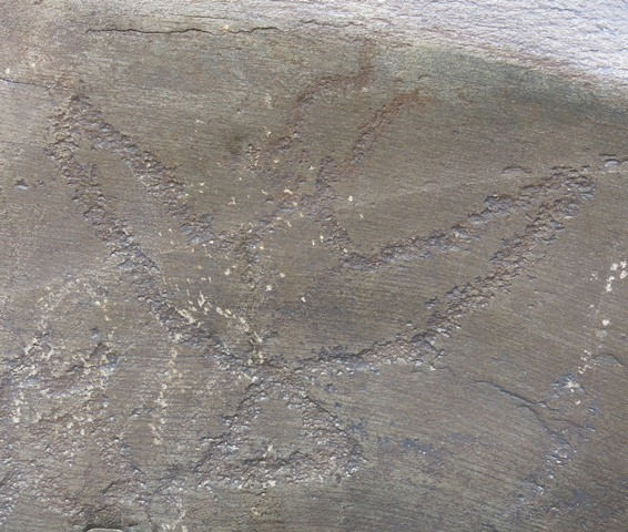 Fig. 14. A majestic khyung rock carving with fully spread wings, longs horns, pointed beak and triangular tail (24 cm high, 27 cm wing span), Sumdo 2. Note the double-curving left horn, a style of depiction also found in the wild yak rock art of Upper Tibet and Ladakh. Iron Age.
