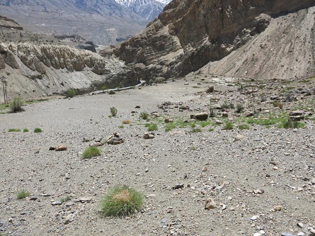 Fig. 29. The shelf at Dzamathang. The mountains of Kinnaur can be seen in the background. To the left of the shelf is the main road that connects Sumdo to Hurling.