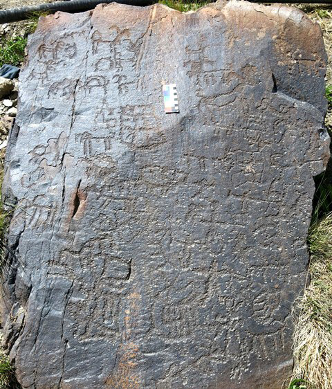 Fig. 5.1. A large southeast-facing panel pullulating with around 50 anthropomorphic and zoomorphic figures and a few rectilinear geometrics. The petroglyphs are dominated by wild caprids and they may be the only species of animals depicted on the boulder. There are at least five anthropomorphs on the panel, two of which clearly have bows. In conventional Spitian style, the sundry figures are in very close proximity or actually touching one another. Iron Age.