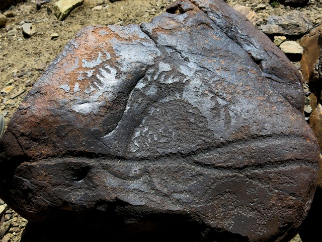 Fig. 10.11. Another end of the boulder in figs. 10.9 and 10.10. Note the deeply carved forked line running across the full breadth of the boulder and the intricate curvilinear motif above. There are wavy lines below the forked line. Several animals grace the upper portion of the rock.