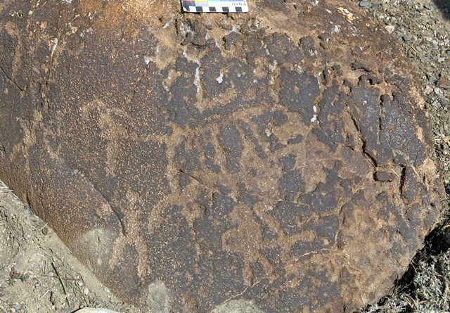 Fig. 11.29. Three anthropomorphs, at least two which are armed with bows, hunting blue sheep, one of which is clearly represented. These petroglyphs have undergone much wear. Protohistoric period.