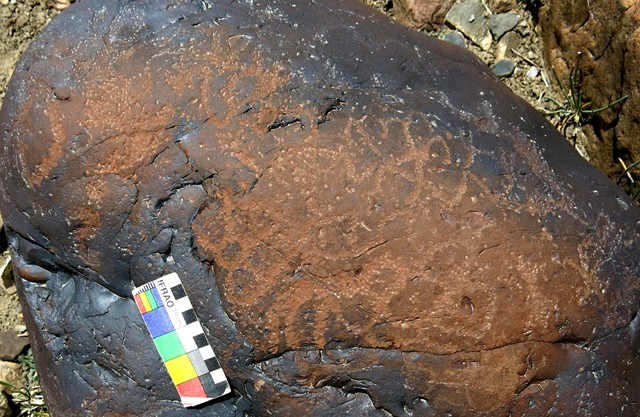 Fig. 11.43. A mass of interconnected circles and curved lines spread across the top of a boulder. Much of the veneer that once encased the upper part of the rock has been worn away. Protohistoric period.