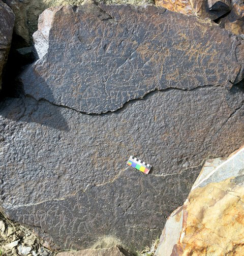 Fig. 13.2. A boulder with many anthropomorphic and zoomorphic figures. Most of these petroglyphs can be attributed to the Protohistoric period. Note how the middle portion of the surface of the boulder is missing. This loss occurred long ago, as the missing section is heavily re-patinated and eroded and hosts several ancient petroglyphs.