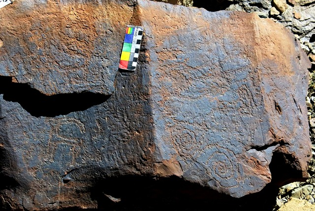 Fig. 14.40. Ibex (lower left), double spiral (lower right) and a host of other not easily recognizable carvings. Protohistoric period.