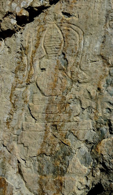 Fig. 21.5. The central specimen of the three largest chorten, Jomo Phuk. Note the thick streamers flanking the upper half of this carving. Much of the multi-tiered base has been obliterated. The upper five levels however are intact. There are rows of tiny chorten carved across each stage: platform below spire (one row), rounded midsection (three rows), five tiers of upper base (one row in each tier), and tiers of lower portion of base (three rows).