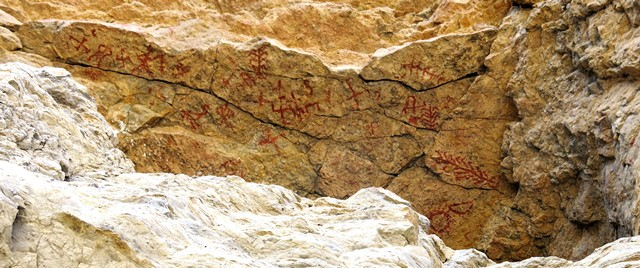 Fig. 25.1. The main concentration of red ochre rock paintings at Kubum. From left to right the main pictographs include swastika, unidentified, swastika, anthropomorph, sunburst, swastika, bird and anthropomorph, swastika, swastika and tree, swastika, anthropomorph or animal (?), swastika, swastika, crescent moon, linear design (tree?), swastika and tree, and tree, sun and moon.