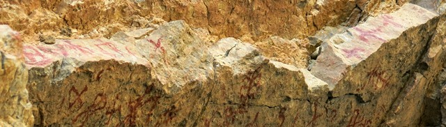 Fig. 25.5. A view of the rim of the rock ceiling with a number of other pictographs, including swastikas and possibly anthropomorphs, Kubum.