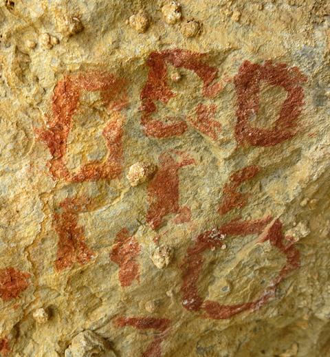 Fig. 28.6. Close-up of circle and other geometric forms in fig. 28.4. These figures appear to form a single composition. The identity of these pictographs is unclear.