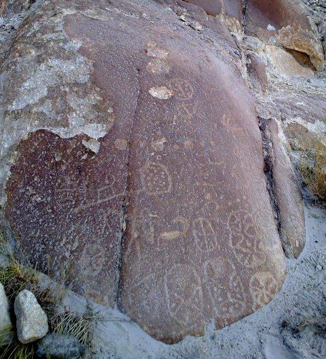 Fig. 8. A variety of mascoids carved on a single boulder, Sasoma Military Camp.