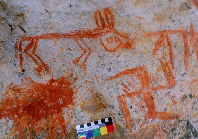Fig. 24. Swastika and stick figure animal, Eastern Changthang. These two figures and perhaps others in this small cave may have been created by the same painter. The naïve form of the animal is in keeping with later styles of rock art. Early Historic period.