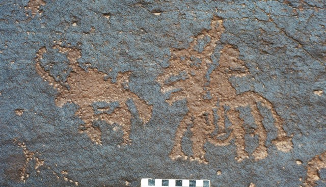 Fig. 21. Bowman on horseback closing in on a relatively small wild yak, western Changthang. Iron Age.