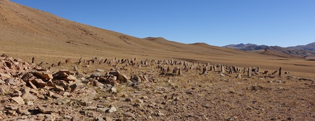 Fig. 47. A view of the array of stelae of the East Complex from a southwestern perspective.