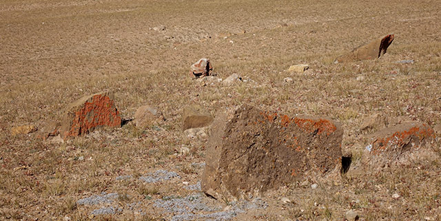 Fig. 50. Stones protruding from the ground marking the site of another funerary structure (FS13) at TBRH.